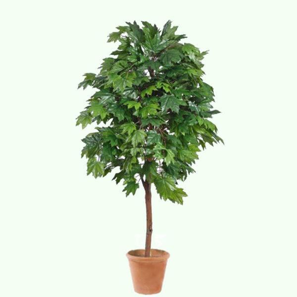 Дерево клен искусственный
