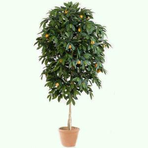 Искусственное дерево мандарин